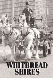 Whitbread Shires